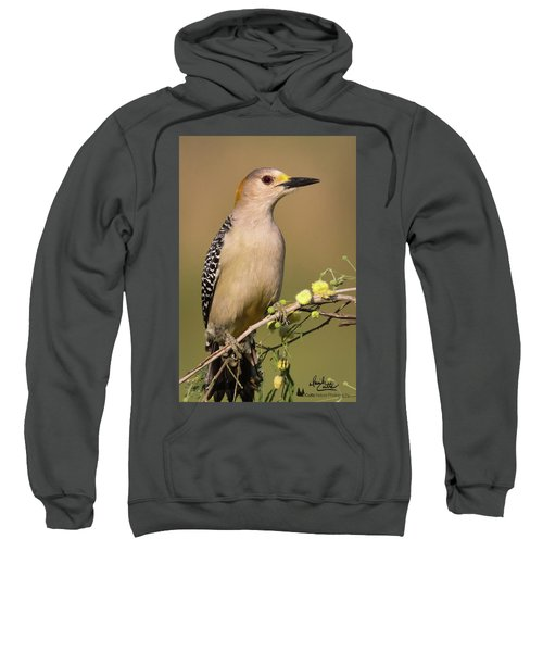 Portrait Of A Golden-fronted Woodpecker Sweatshirt