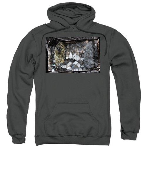 Power Strolled Onto The World Sweatshirt