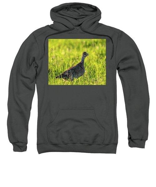 Prairie Chicken Hen Sweatshirt