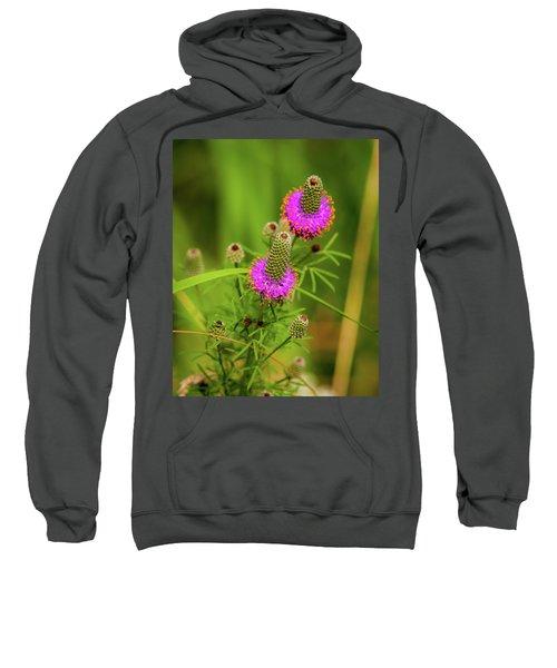Prairie Clover Sweatshirt