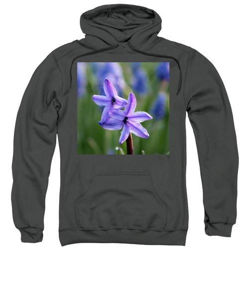 Purple Petals Sweatshirt