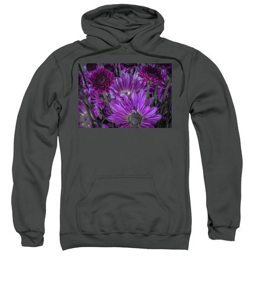 Purple Power Chrysanthem Selective Colorum  Sweatshirt
