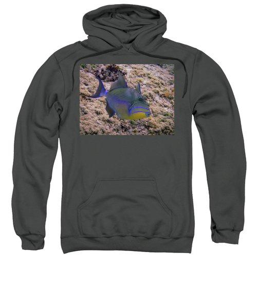 Queen Profile Sweatshirt