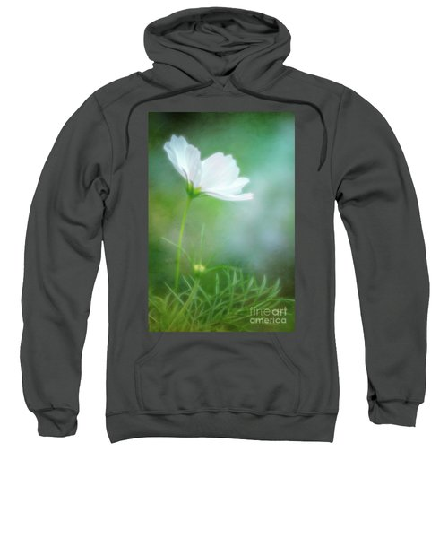Radiant White Cosmos In The Evening Light Sweatshirt