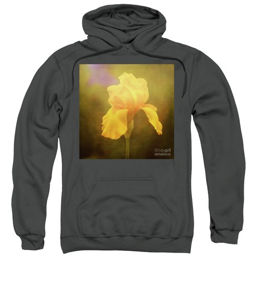 Radiant Yellow Iris With A Vintage Touch Sweatshirt