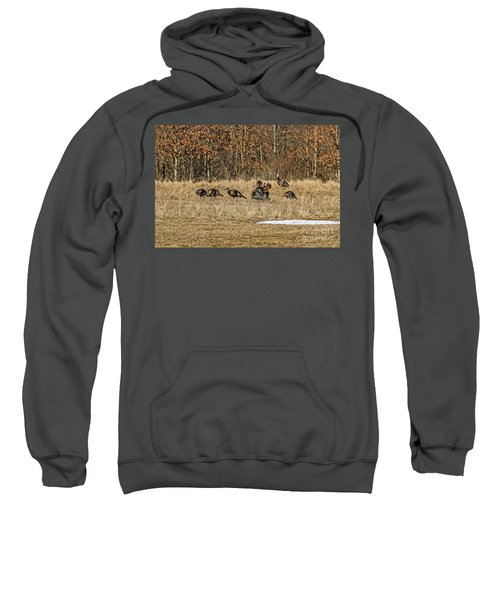 Rafter Of Wild Turkeys Sweatshirt