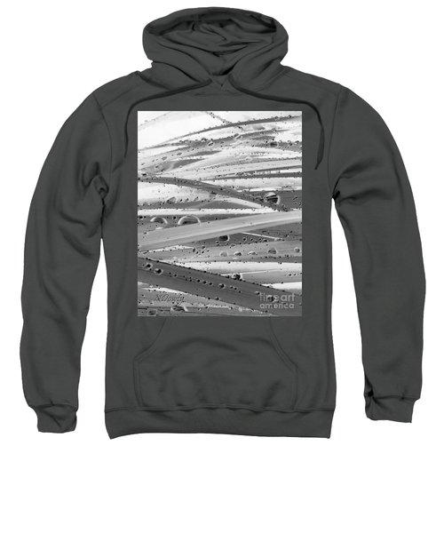 Rain On Siberian Iris Sweatshirt