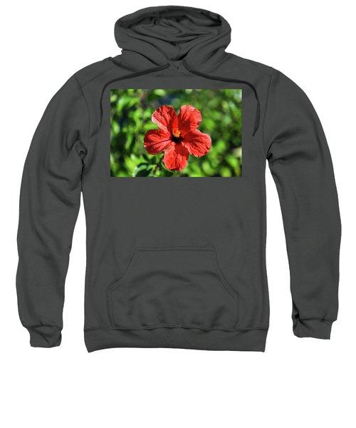 Red Hibiscus Sweatshirt