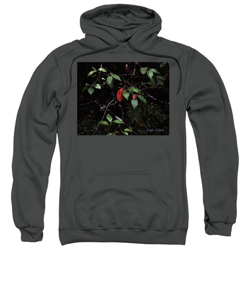 Red Leaf Sweatshirt
