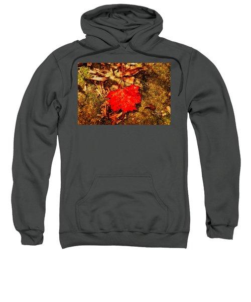 Red Leaf On Mossy Rock Sweatshirt