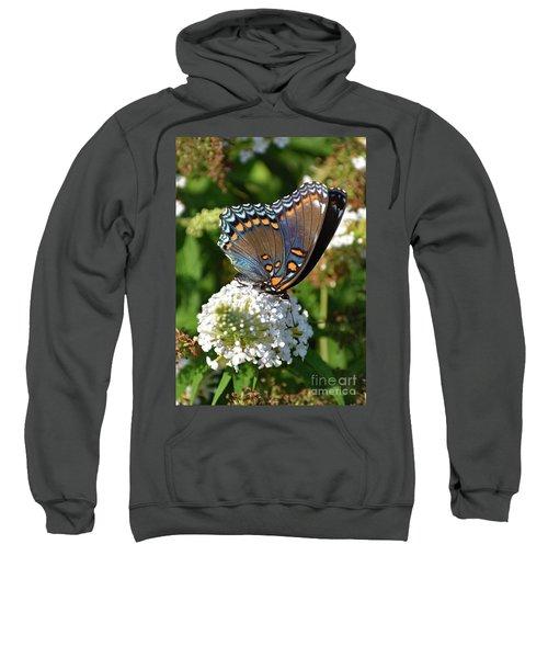 Red-spotted Purple On White Butterfly Bush Sweatshirt