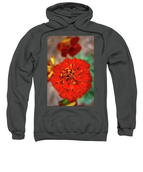 Red Summer Flowers Sweatshirt
