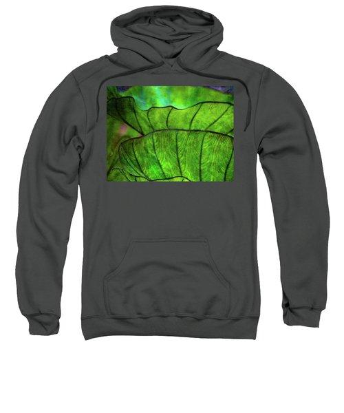 Repetition 5155 Idp_2 Sweatshirt