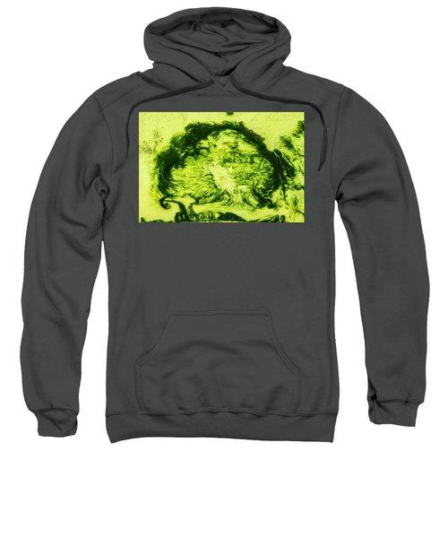 Rhapsody In Green Sweatshirt