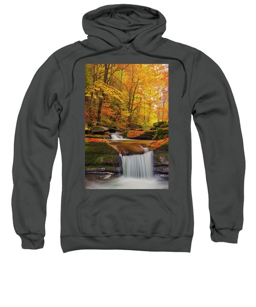 Sweatshirt featuring the photograph River Rapid by Evgeni Dinev