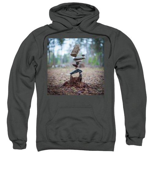 Rootzen Sweatshirt