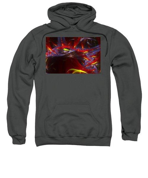 Round And Round Sweatshirt