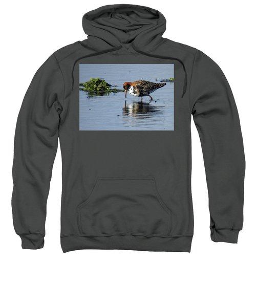 Ruff 40407 Sweatshirt