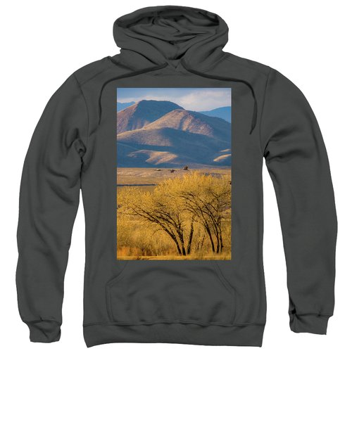 Sandhill Cranes Near The Bosque Sweatshirt