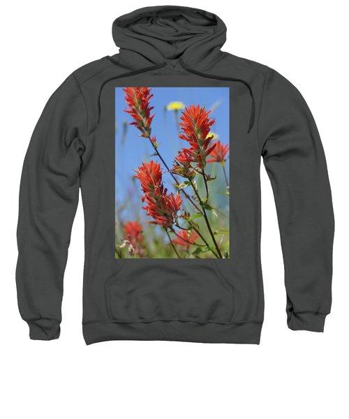 Scarlet Indian Paintbrush At Mount St. Helens National Volcanic  Sweatshirt