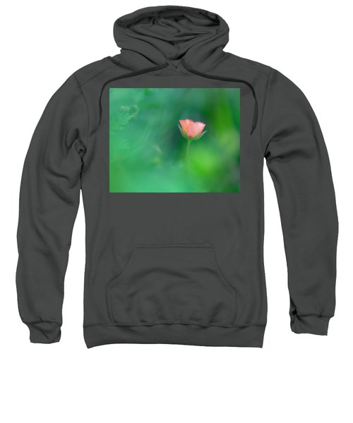 Scarlet Pimpernel Sweatshirt