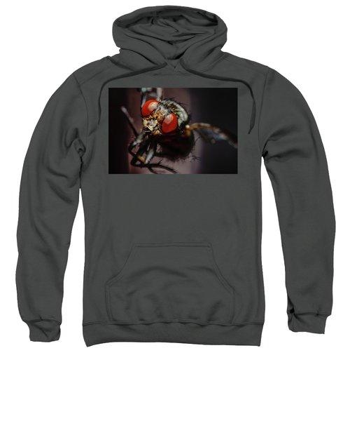 Scavenger Close-up Sweatshirt