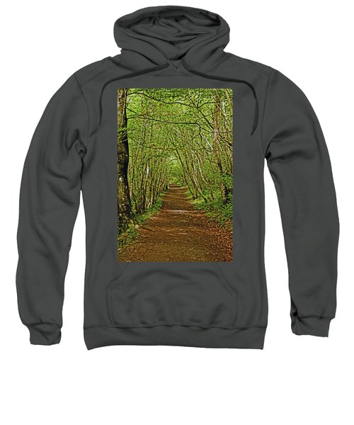 Scotland. Killiecrankie. Path Through The Trees. Sweatshirt