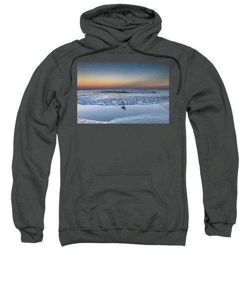 Seagull On The Beach Sweatshirt