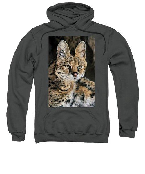 Serval Portrait Wildlife Rescue Sweatshirt