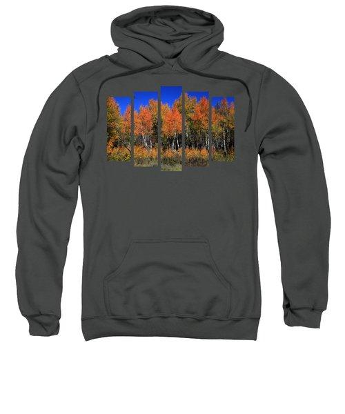 Set 53 Sweatshirt