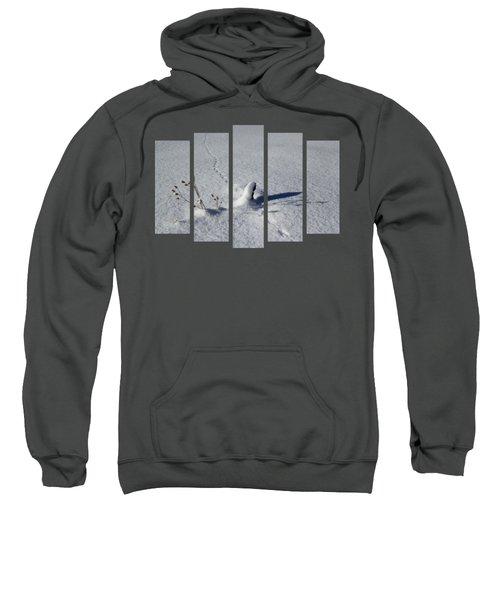 Set 74 Sweatshirt