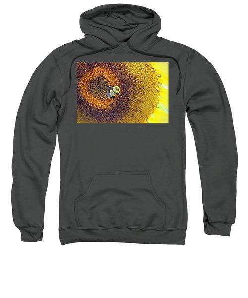 Shades Of Sun Sweatshirt
