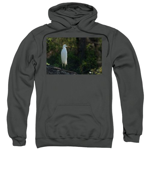 Shadow Heron Sweatshirt