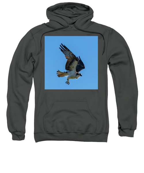 Shake It Off 7 Sweatshirt