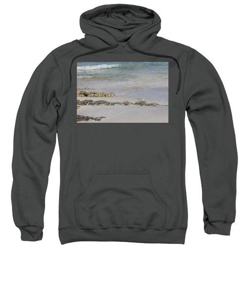 Shorebird Sweatshirt