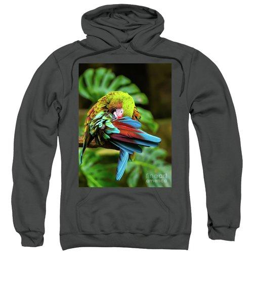 Shy Parrot Sweatshirt