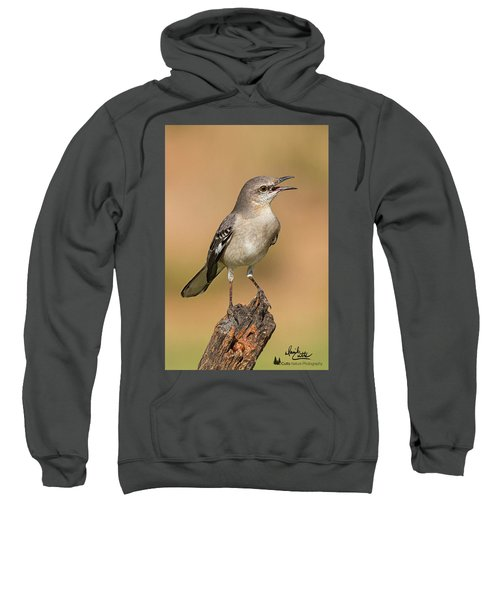 Singing Mockingbird Sweatshirt