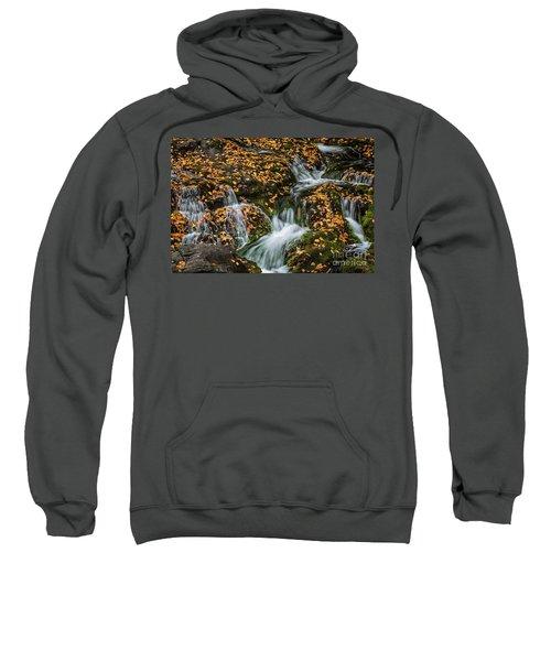 Smokey Mountain Falls Sweatshirt