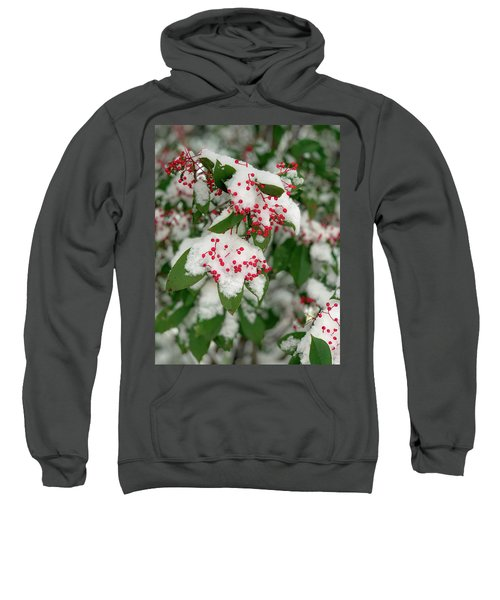 Snow Covered Winter Berries Sweatshirt