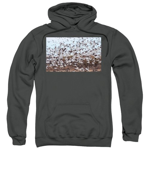 Snow Geese Chaos Sweatshirt