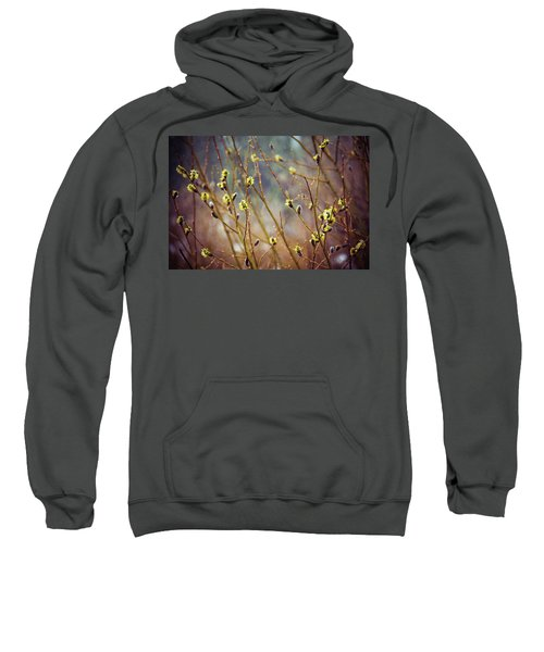 Snowfall On Budding Willows Sweatshirt