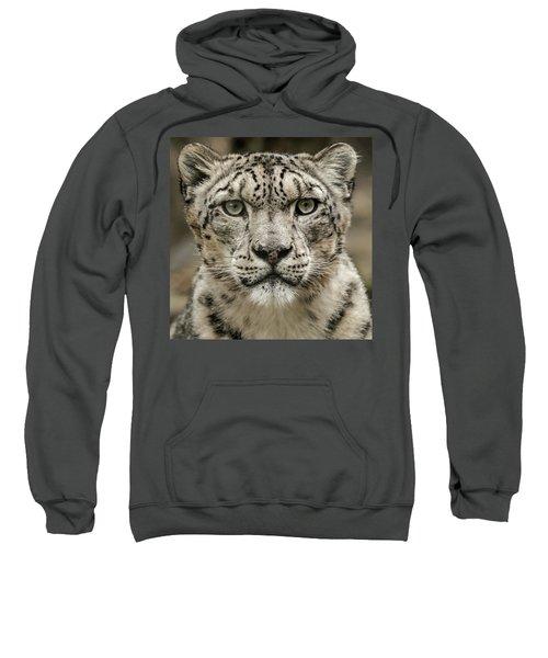 Snowleopardfacial Sweatshirt