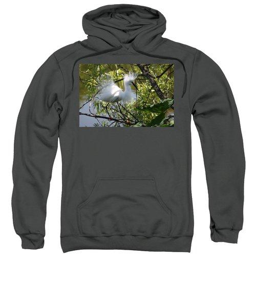Snowy Egret 4031202 Sweatshirt
