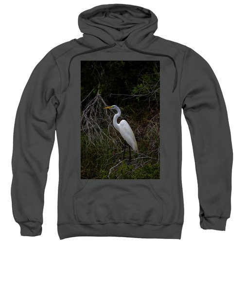 Snowy Egret On A Hot Summer Day Sweatshirt