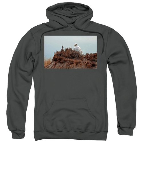 Snowy Owl In The Dunes Sweatshirt