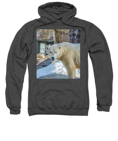 Someone's Hangry Sweatshirt