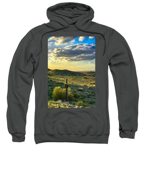 Sonoran Desert Portrait Sweatshirt