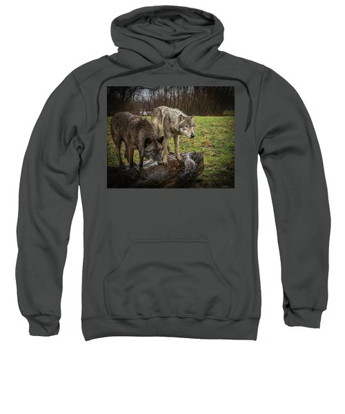 Sort Of Twins Sweatshirt