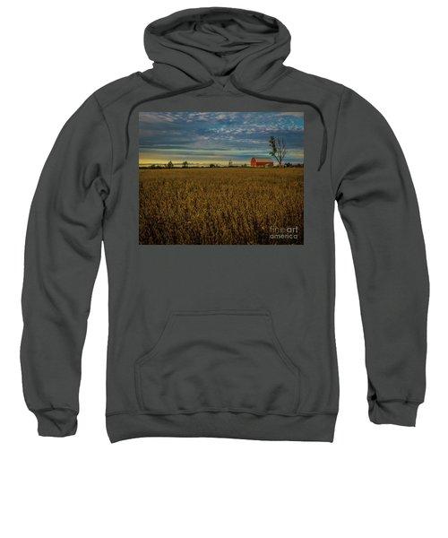 Soybean Sunset Sweatshirt