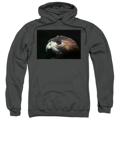 Sparkle In The Eye - Red-tailed Hawk Sweatshirt